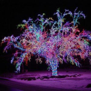 Украсить деревья гирляндами