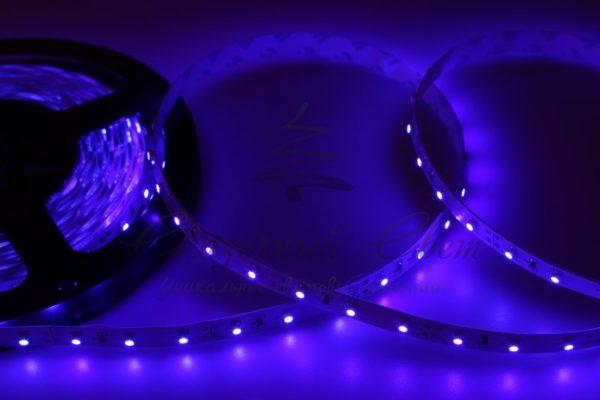 LED лента открытая, 8мм, IP23, SMD 2835, 60 LED/m, 12V, синяя, катушка 5 м