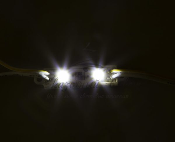 Модуль светодиодный, IP67 влагозащищенный, 2 SMD5050 диода, БЕЛЫЙ  NEON-NIGHT