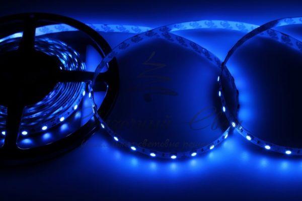 LED лента открытая, 10мм, IP23, SMD 5050, 60 LED/m, 12V, синяя, катушка 5 м