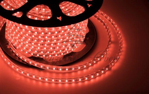 LED лента 220В, 10*7 мм, IP65, SMD 2835, 60 LED/m Красная, бухта 100 м