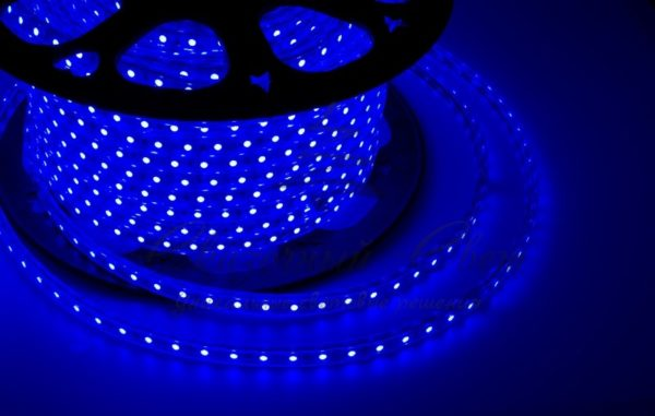 LED лента 220В, 10*7 мм, IP65, SMD 2835, 60 LED/m Синяя, бухта 100 м