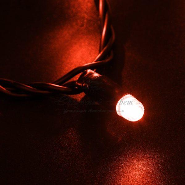 Гирлянда Нить 10м, постоянное свечение, черный ПВХ, 24В, цвет: Красный 2
