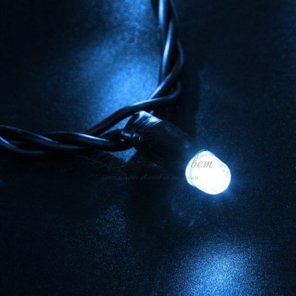 Гирлянда Нить 10м, постоянное свечение, черный ПВХ, 24В, цвет: Синий 2