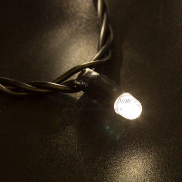 Гирлянда Нить 10м, постоянное свечение, черный ПВХ, 24В, цвет: Тёплый белый 2
