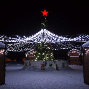 Акриловая светодиодная фигура «Звезда» 50см, 160 светодиодов, красная, NEON-NIGHT