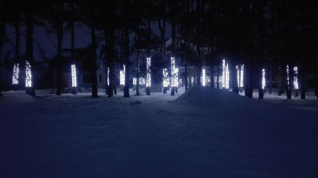 Оформление иллюминацией фасадов, деревьев, елей