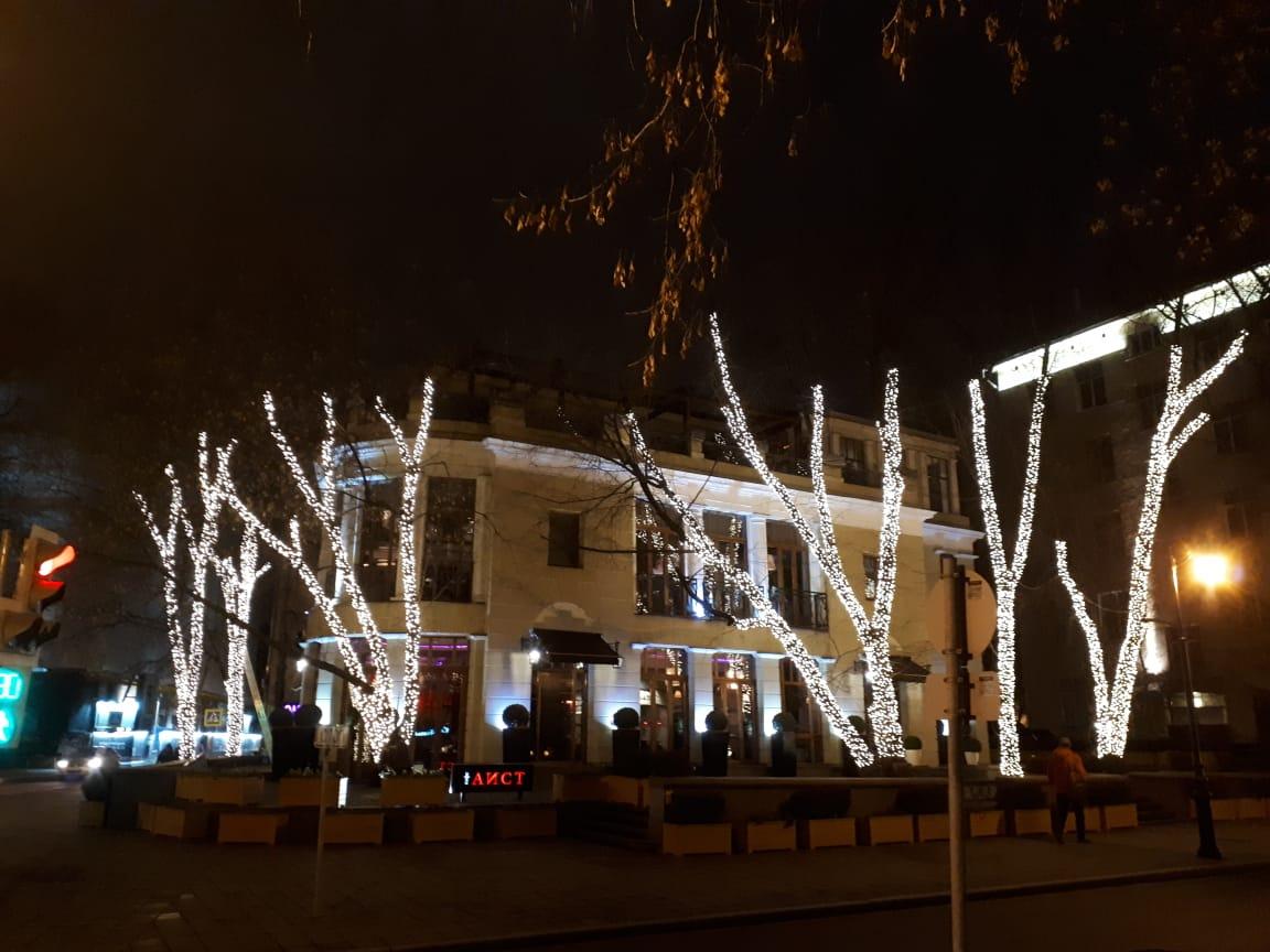 Подсветка деревьев 1