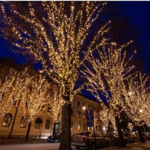 Подсветка деревьев 4